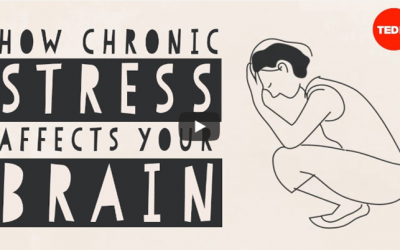 How chronic stress affects your brain: Madhumita Murgia