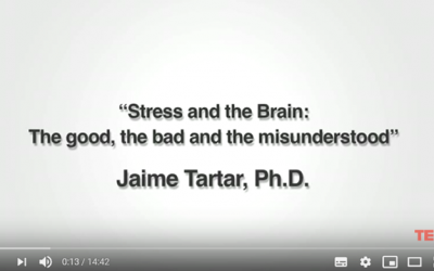 Stress &The Brain