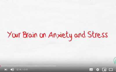 Your Brain on Stress and Anxiety
