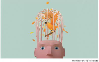 Zo werkt je gestresste brein
